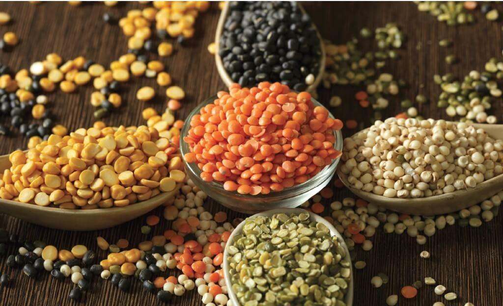 3 loại đậu lăng đỏ nâu xanh hữu cơ sottolestelle